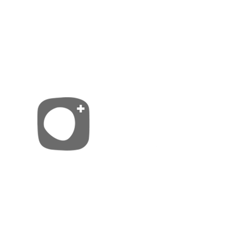 blitz-solution_-de-primera_partner
